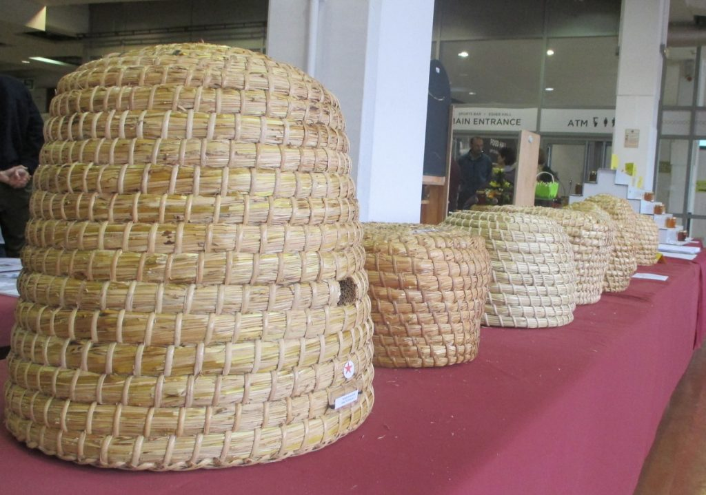 Beekeeping traditional style. Beekeepers entering their own skeps (in a competition!)
