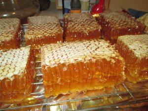 Cut-comb ling heather honey