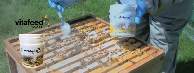 Compléments alimentaires pour abeilles Vita Feed Nutri