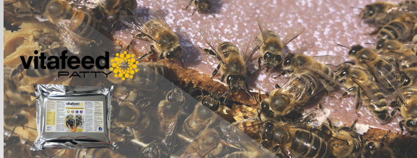 Compléments alimentaire pour abeilles Vita Feed Patty
