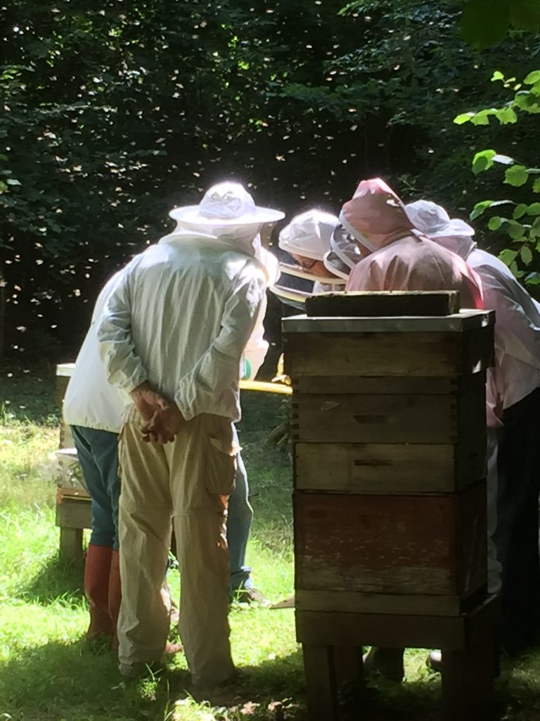Busy bees; busy beekeepers!