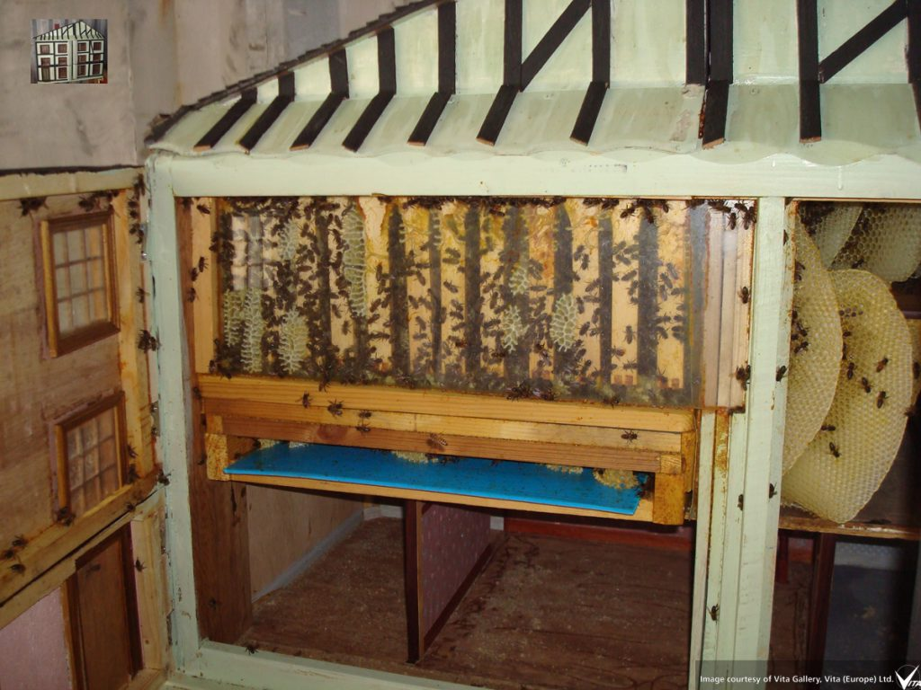 adapted doll's house with frames, varroa floor & wild comb in spare rooms